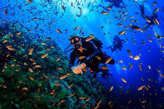 scuba diving for beginners intermediate advenced