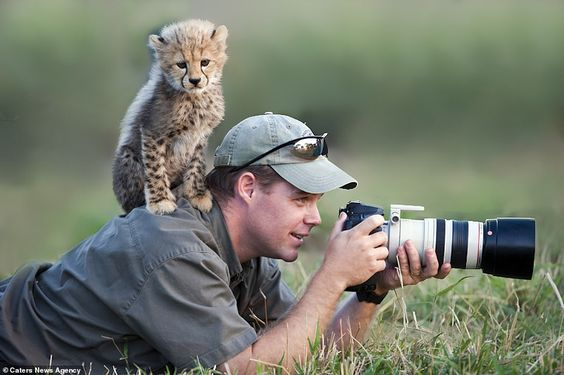Sharpen Your Photography Skills Through A Wildlife Trip