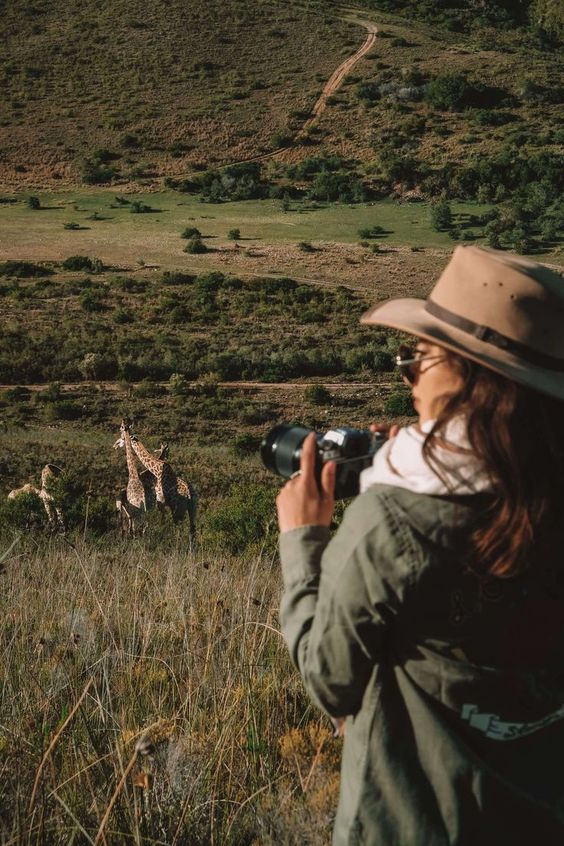 Wildlife Travel For Your Next Travel Plan