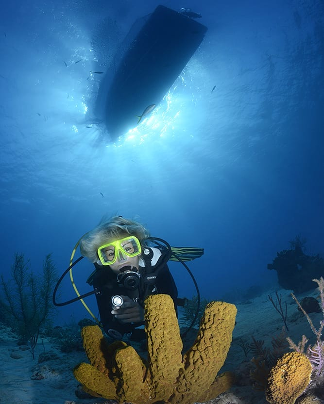 How to Do Better Scuba Diving for Beginners