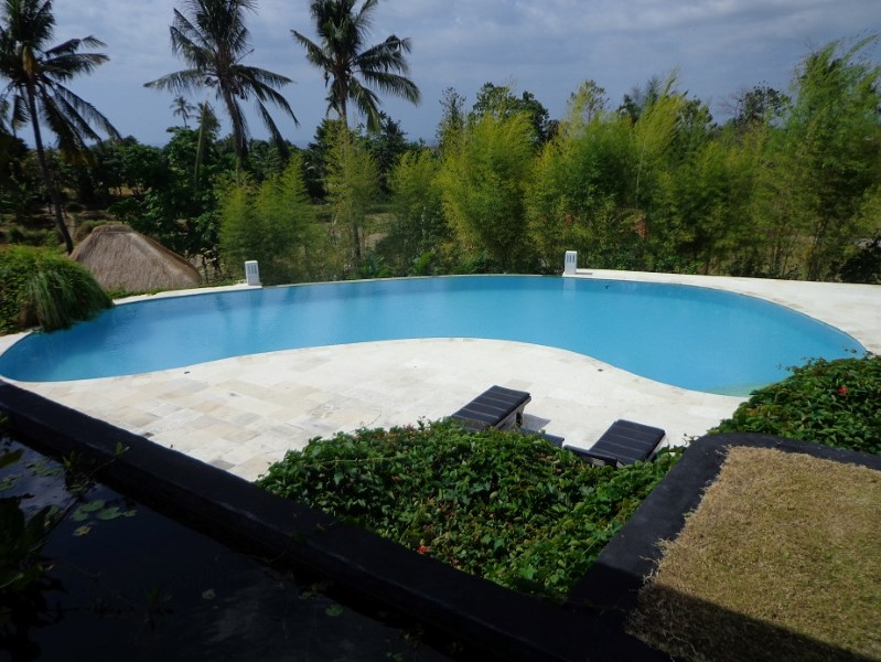 Villa Lovina Bali You Can Find for a holiday